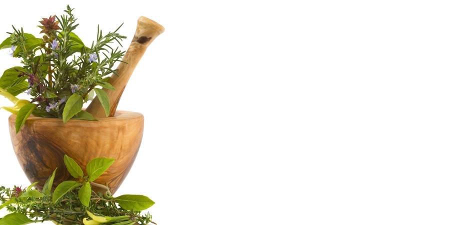Healing-Herbs11